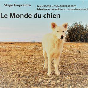 Educateur-canin-91-laura-sgard (2)