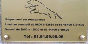TBE-hydrothérapie-chien