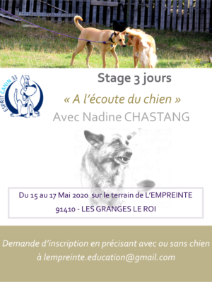 stage 3 jours affiche